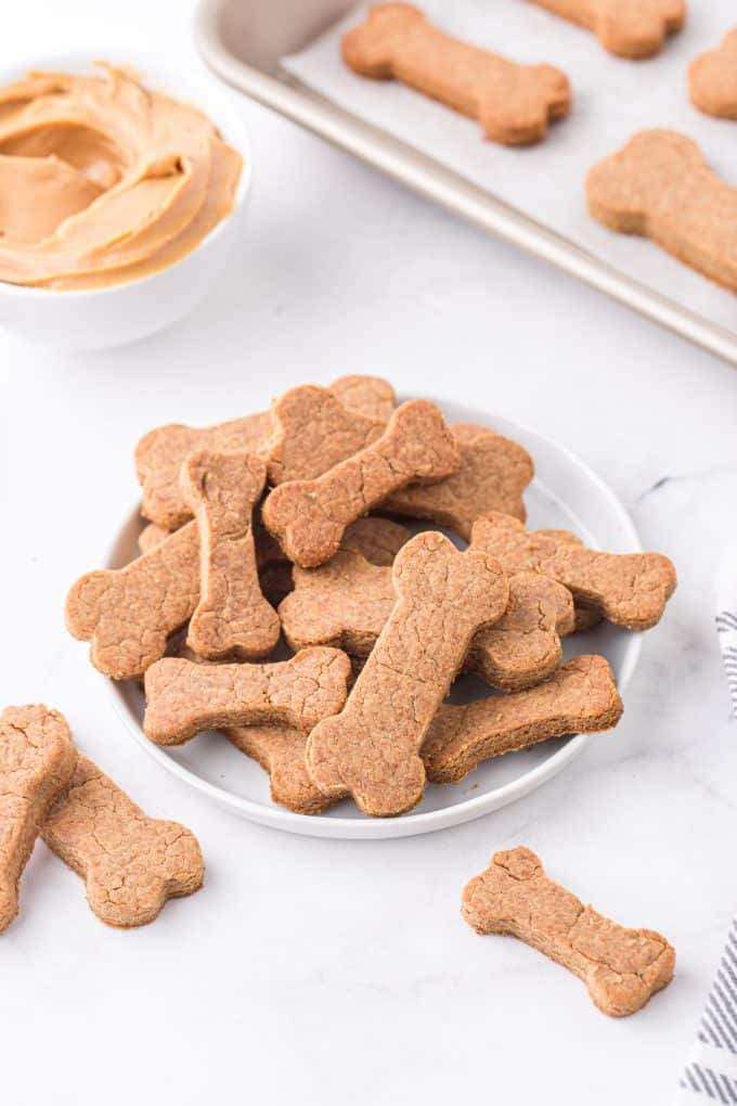 peanut butter dog treat cookies in a plate