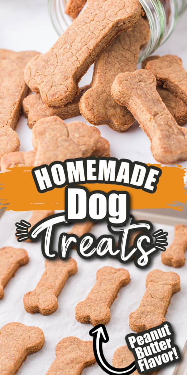 Homemade dog treats Pinterest