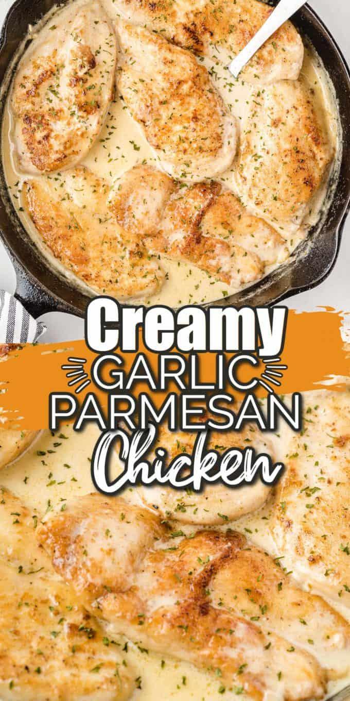 creamy garlic parmesan chicken Pinterest
