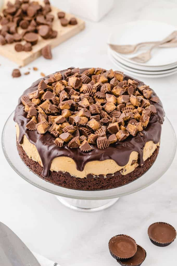 sprinkle remaining peanut butter cups on top