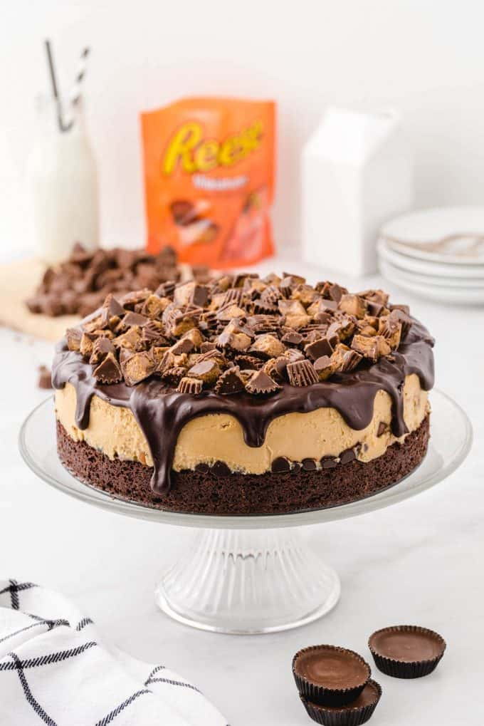 Reese's cheesecake hero image