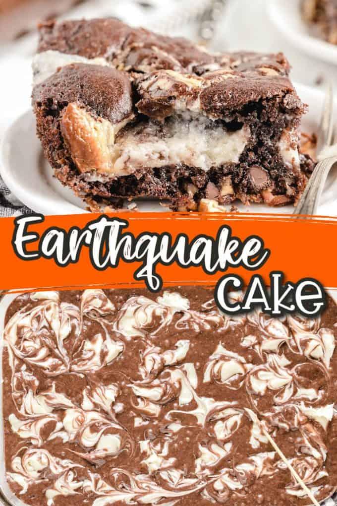 Earthquake Cake Pin