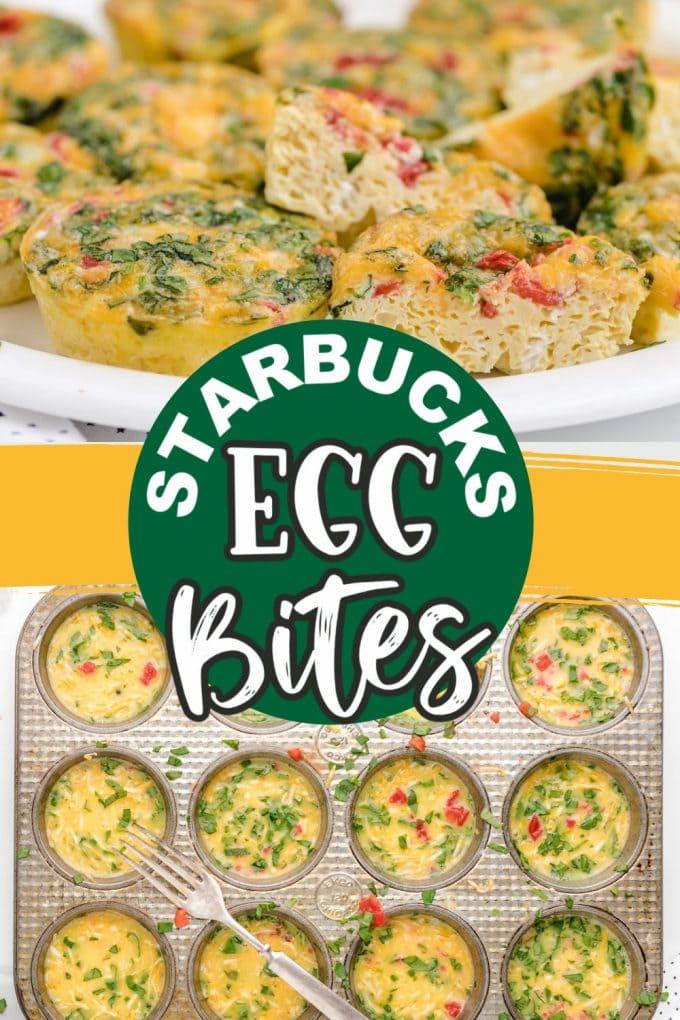 Egg Bites recipe pinterest