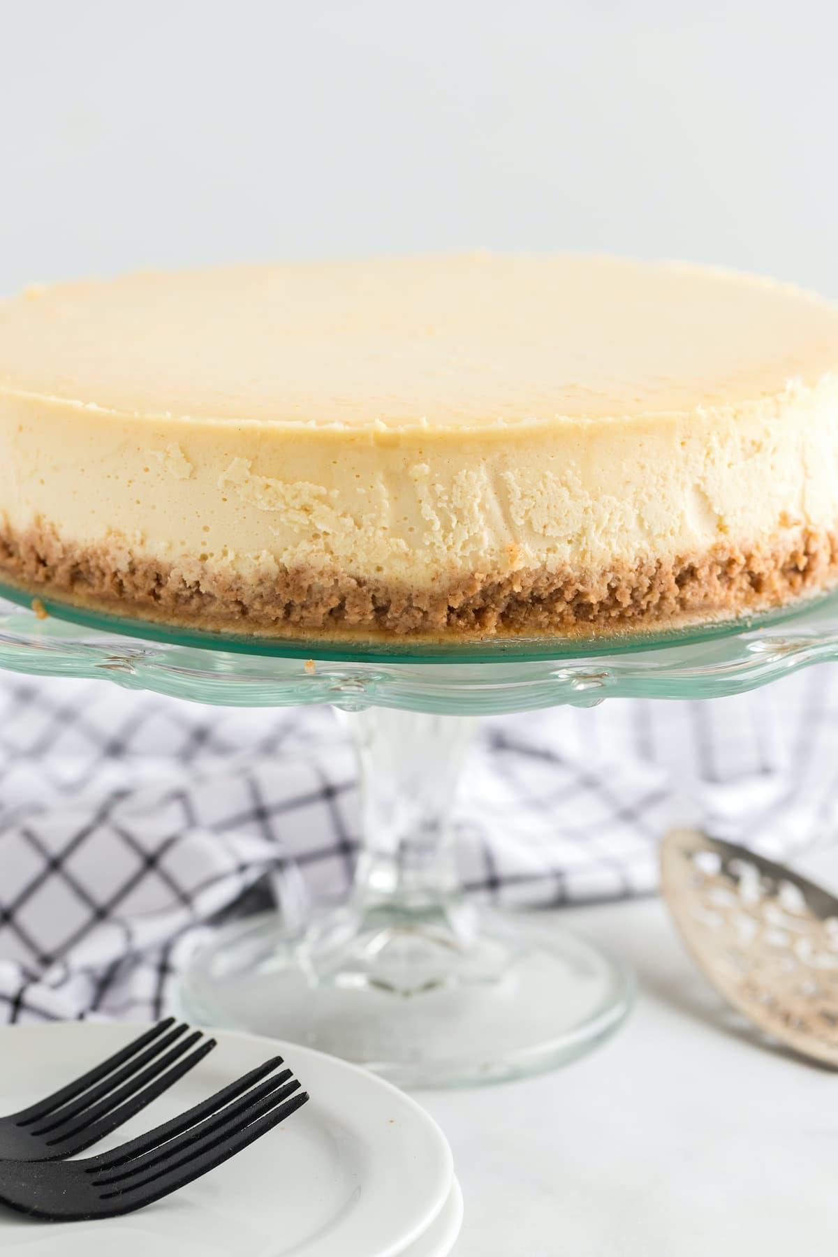 cheesecake hero image