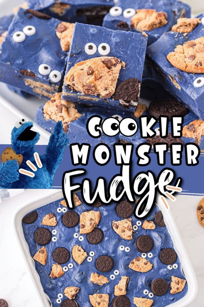 cookie monster fudge pinterest